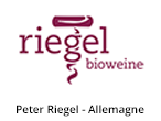 Peter Riegel